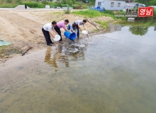 [상주] 내수면 어자원 보호 위해 토종어류 방류