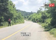 [상주]낙동면, 51Km구간 도로변 제초작업 실시