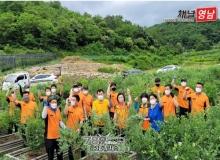 [상주]김영선 경상북도 의회 의원, 상주소방서 농촌 일손 돕기 보탬