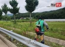 [상주]이안면, 새마을회 여름맞이 도로변 제초작업